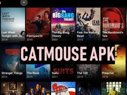 catmouse app